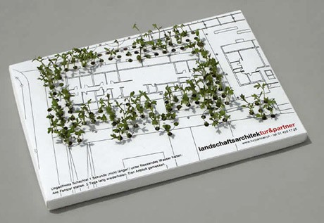 business cards with seeds in them